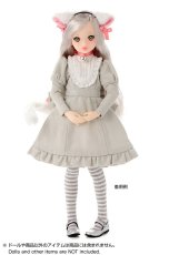 Photo2: Dress: Gray Cat Dress Set (re-stocked) / グレーキャットワンピースセット (2)